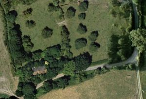 Aerial view of mistletoe-rich orchard in summer - mistletoe entirely hidden
