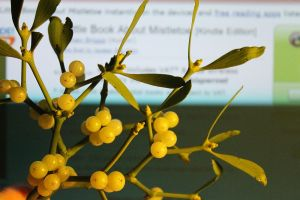 Loadsa lovely berries - and the Amazon website with the Kindle book behind...